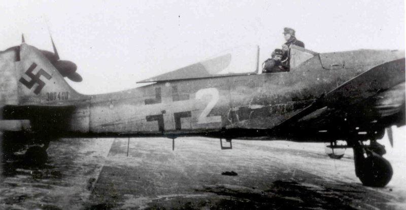 FW190 A8/R8 - 1/48 - Page 5 Mombee10