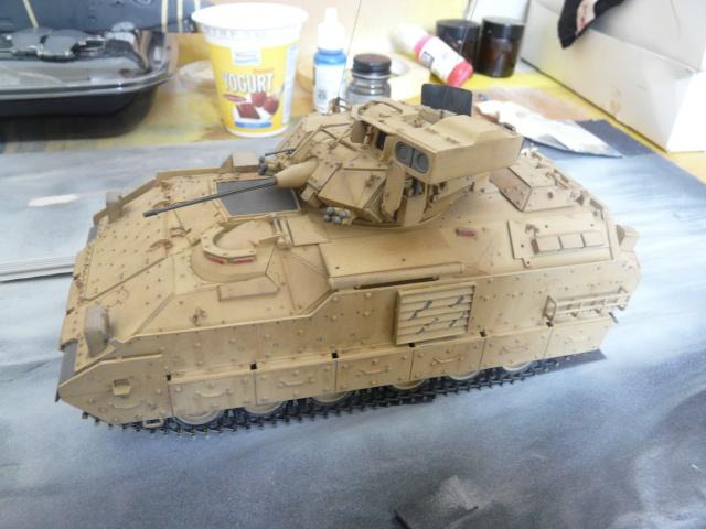M2 Bradley Tamija 1-35  P1080110