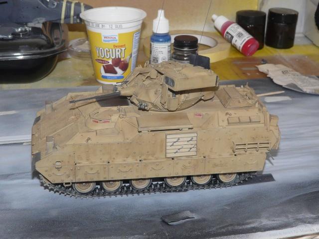 M2 Bradley Tamija 1-35  P1080111