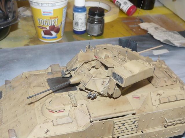 M2 Bradley Tamija 1-35  P1080112