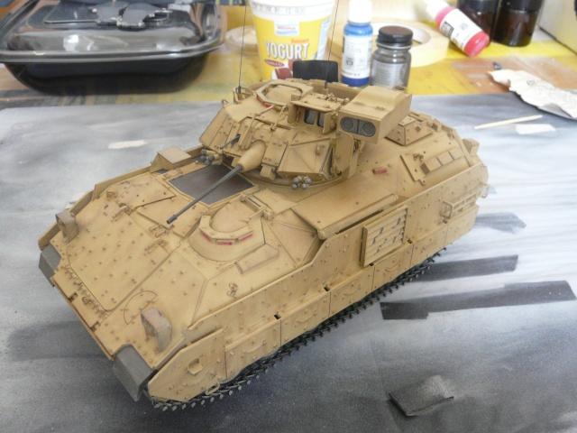 M2 Bradley Tamija 1-35  P1080113