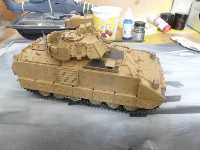 M2 Bradley Tamija 1-35  P1080115
