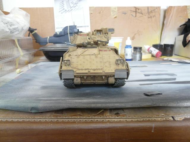 M2 Bradley Tamija 1-35  P1080117