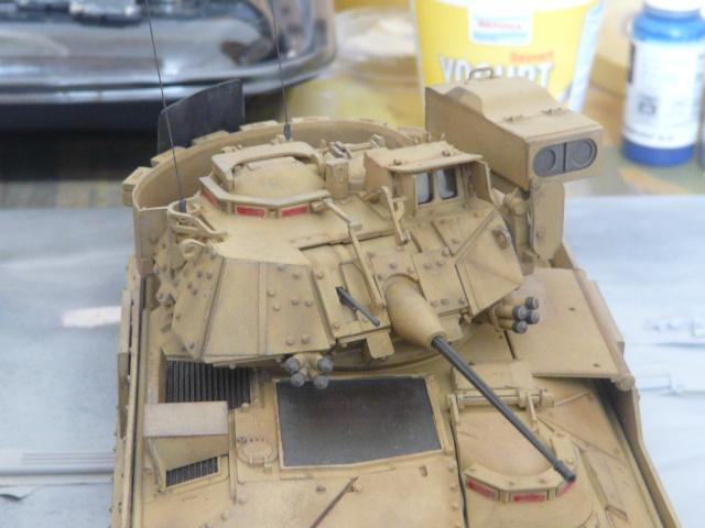 M2 Bradley Tamija 1-35  P1080118