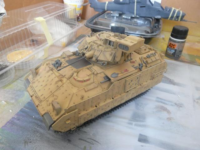 M2 Bradley Tamija 1-35  P1080119