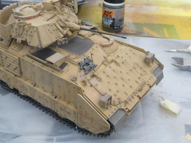 M2 Bradley Tamija 1-35  P1080215