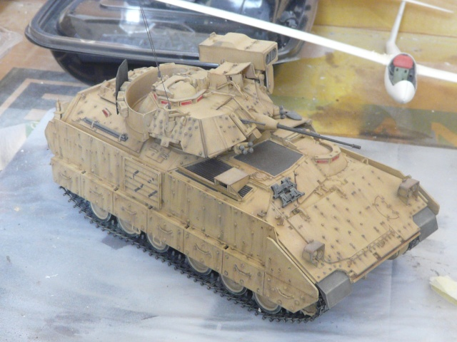 M2 Bradley Tamija 1-35  P1080216