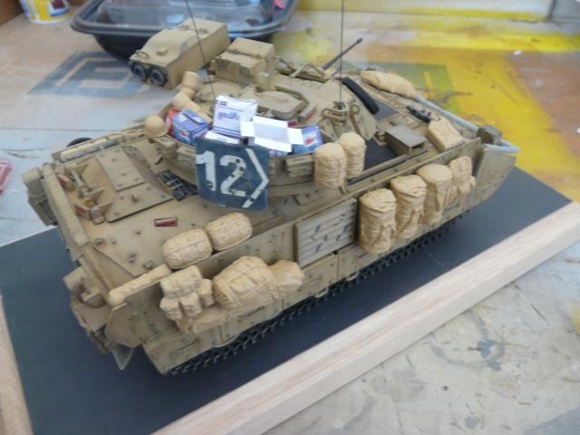 M2 Bradley Tamija 1-35  P1080223