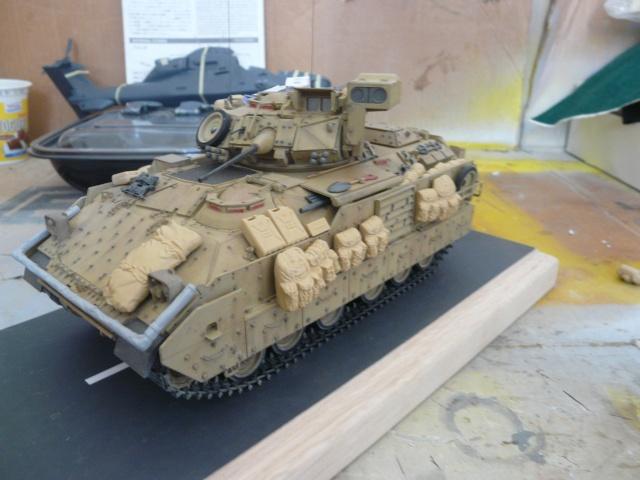 M2 Bradley Tamija 1-35  P1080224