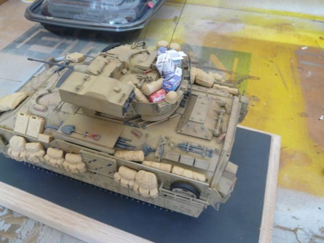 M2 Bradley Tamija 1-35  P1080225