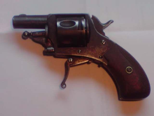 Petit revolver : Pas su l'identifier ! et meilleurs voeux 2010 à toutes et à tous P0801110