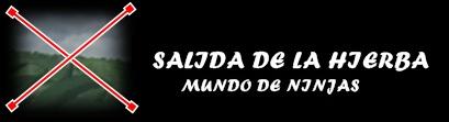 SALIDA DE LA HIERBA