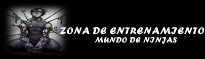 ZONA DE ENTRENAMIENTO
