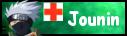 Jounin :: Medic