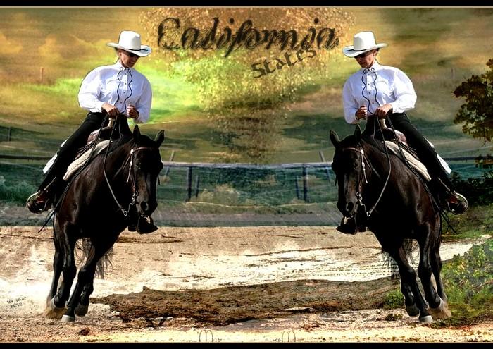 BOX DE CALIFORNIA STATES Califo10