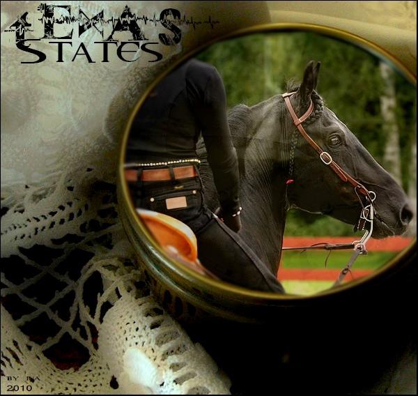 BOX DE TEXAS STATES Texas_10