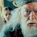 >> Albus Perceval Wulfric Brian Dumbledore Dumble11