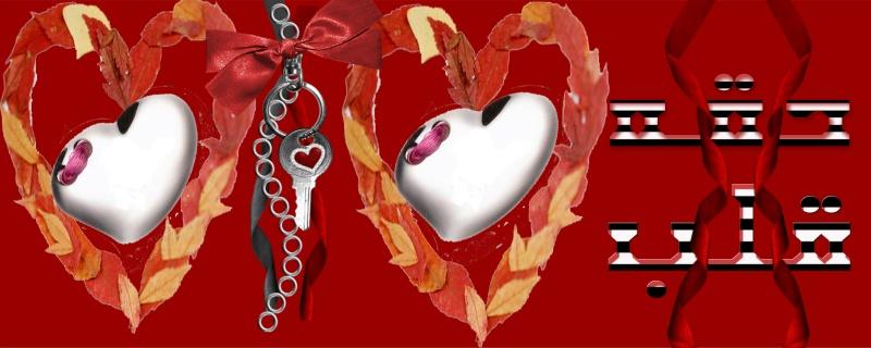 منتديات دقه قلب