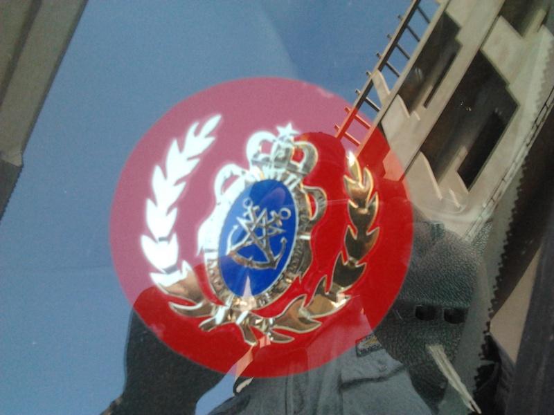 Unités, Grades et insignes dans les FAR / Moroccan Units and Ranks - Page 4 2012-110