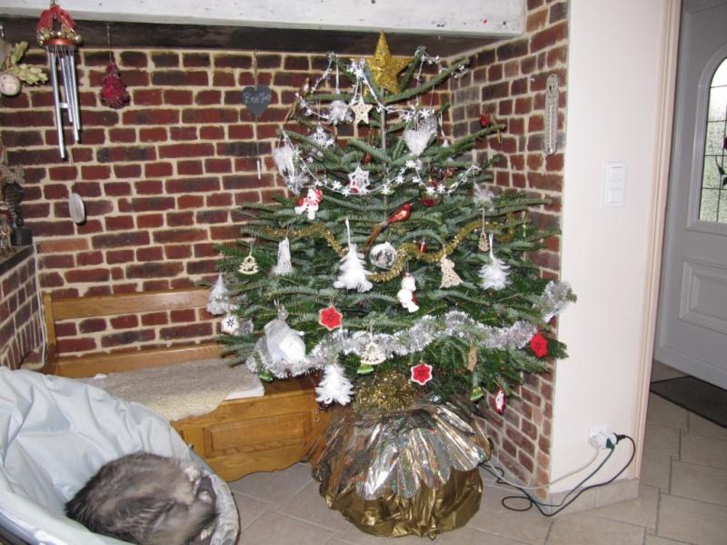 les plus belles décorations pour les fêtes d'hiver 00311