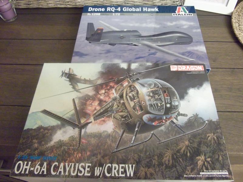 OH-6A Cayuse Dragon 1/35° Dscf0110