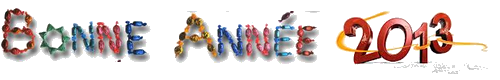 Une bonne année à tous nos chers membres :) - Page 2 Voeux210