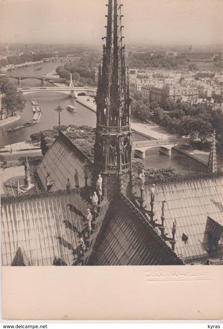 La cathédrale Notre-Dame de Paris en flammes - Page 6 058_0011