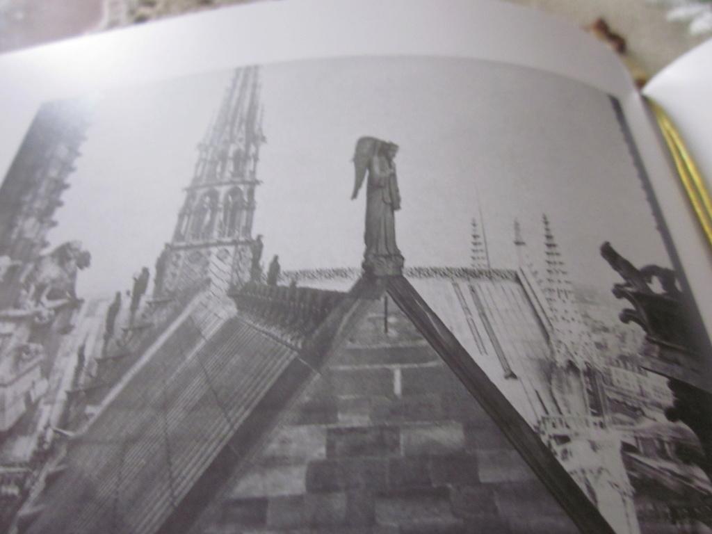 La cathédrale Notre-Dame de Paris en flammes - Page 6 Img_1615