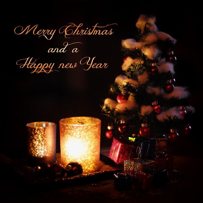 Avatars Joyeux Noël Merry_10