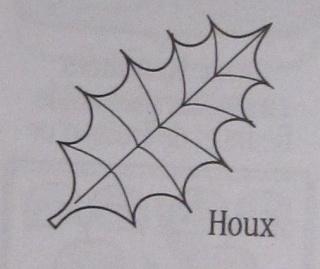 La feuille de houx Houx_010