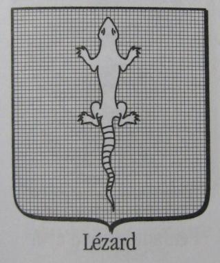 [Reptile] Le lézard Lezard12