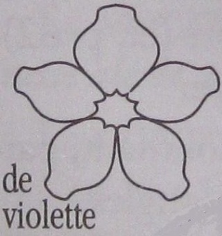 Les violettes Violet10
