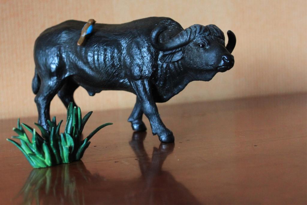 Battat Terra Cape Buffalo- a walkaround New_2033