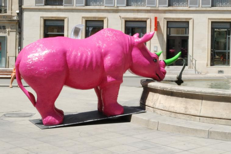 Les Champs sont d'Oscar - Page 3 Rhino-10