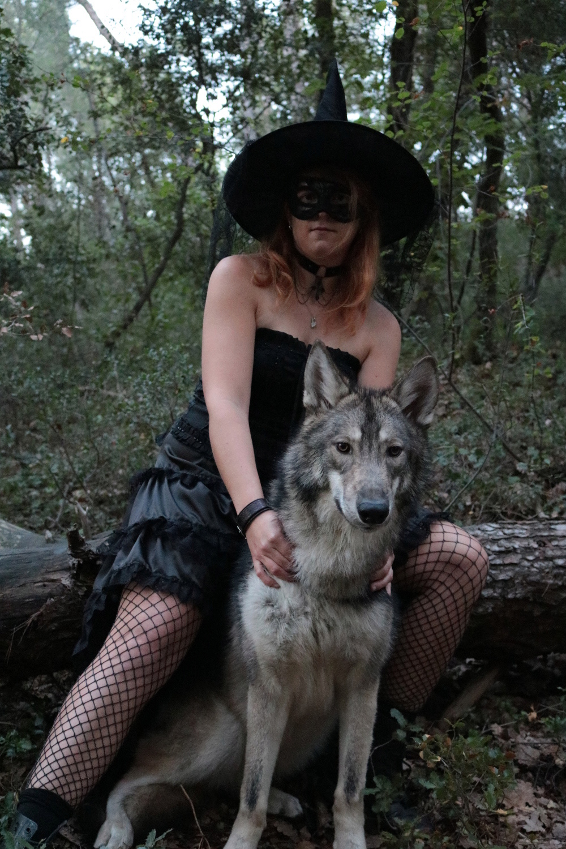 Ash le chien loup - Page 2 Img_9211