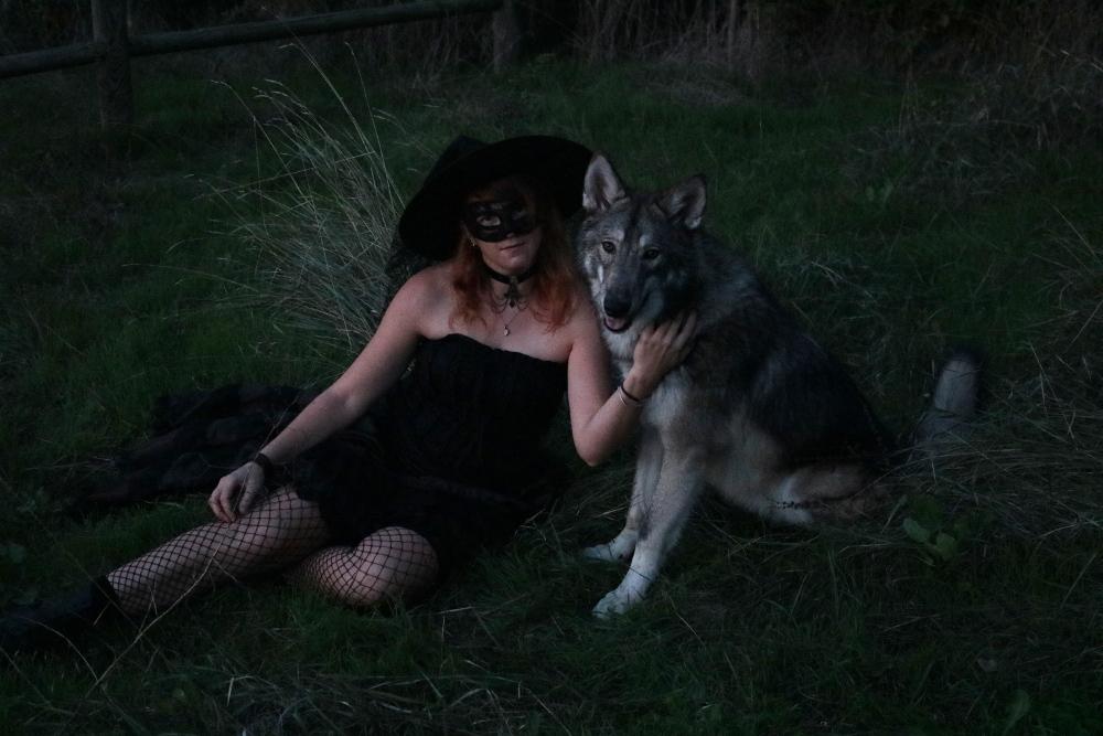 Ash le chien loup - Page 2 Img_9311