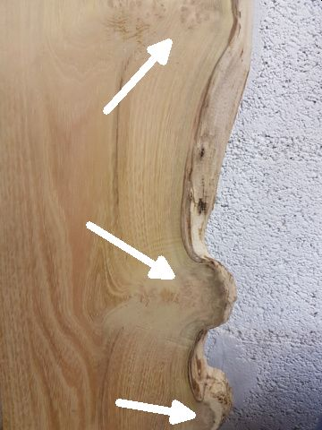 Identification bois Murier10