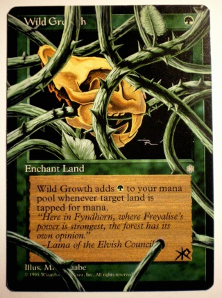 MTG Cards - Altered Art - Page 6 Imgp1615