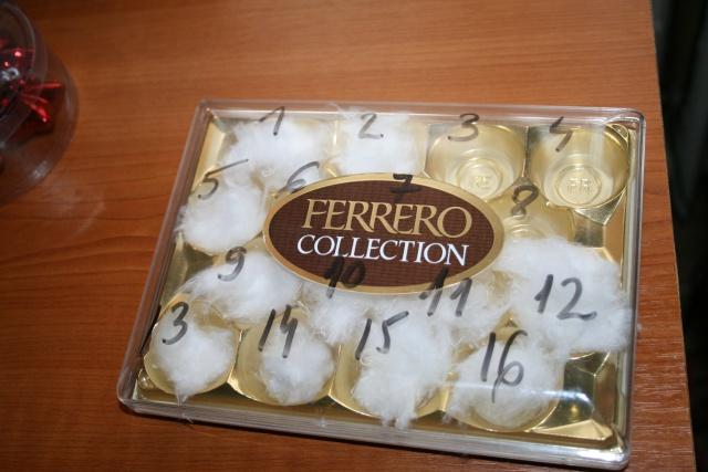mini serre boite à bonbons-germer des graines dans le coton Img_7111