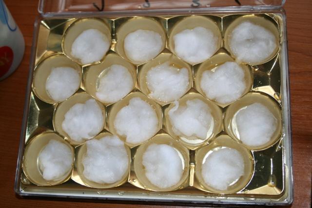 mini serre boite à bonbons-germer des graines dans le coton Img_7112