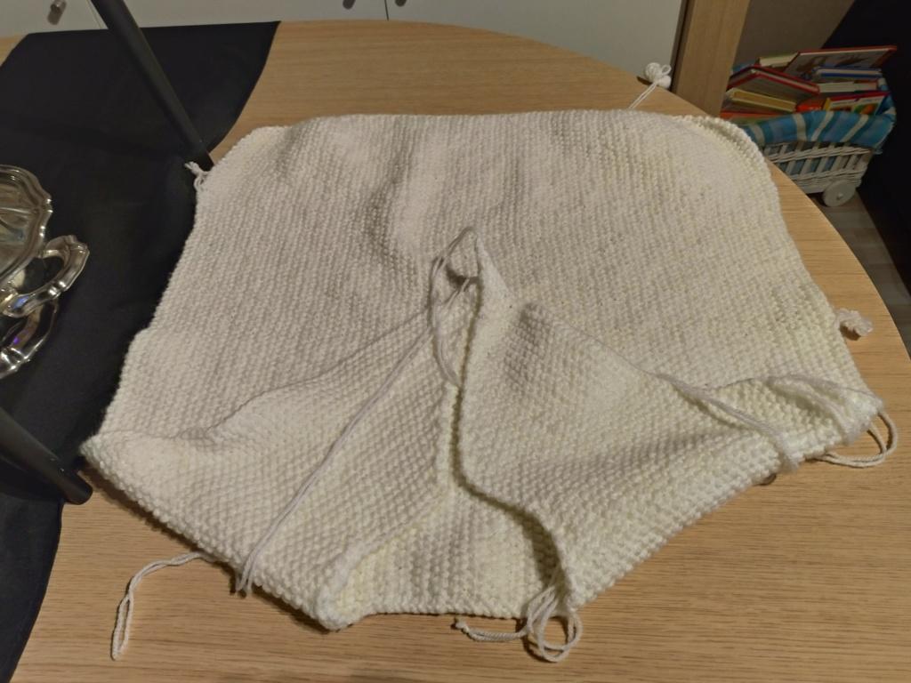 Les tricoteuses et couturières de CDB - Page 5 P_201206