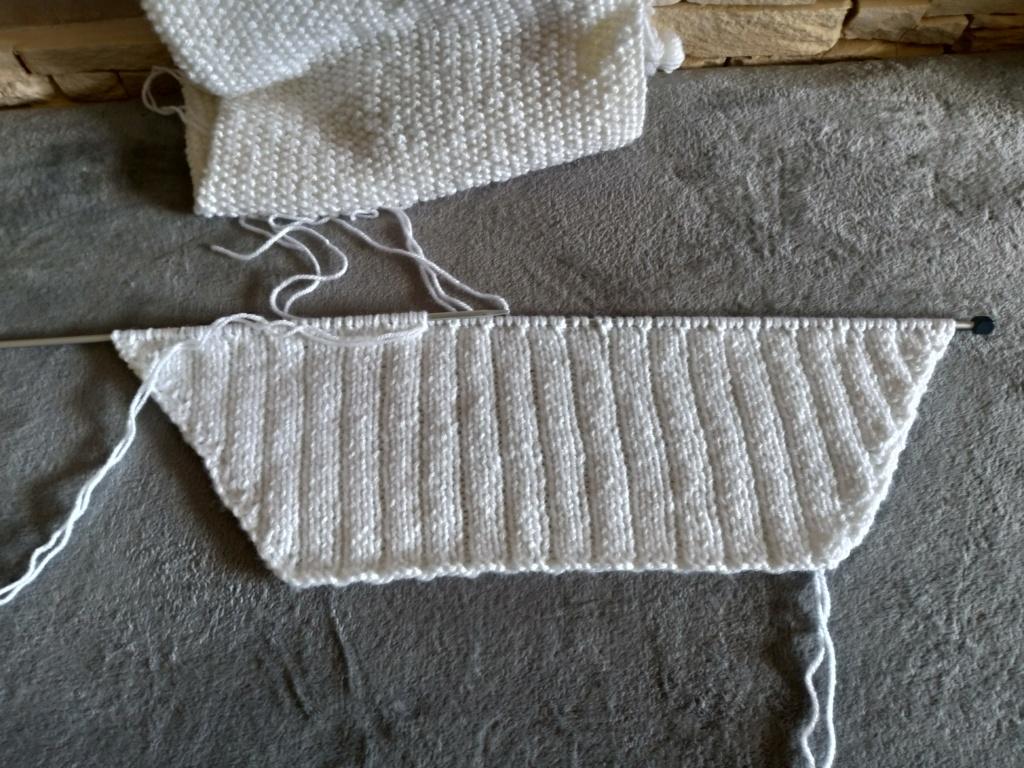 Les tricoteuses et couturières de CDB - Page 5 P_201208