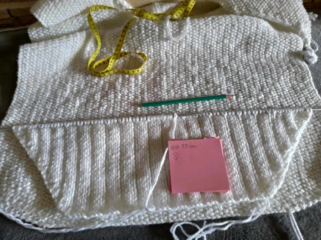 Les tricoteuses et couturières de CDB - Page 5 P_201209