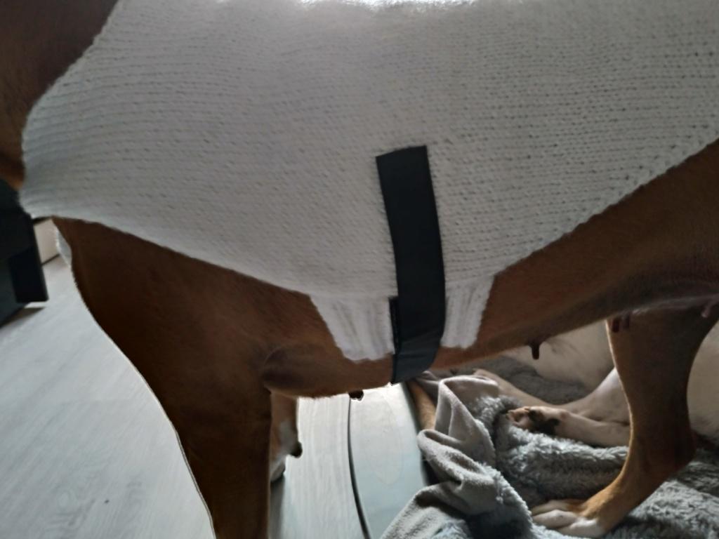 Les tricoteuses et couturières de CDB - Page 8 P_201253