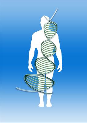 Die DNA als biologische Festplatte Gerd_a36