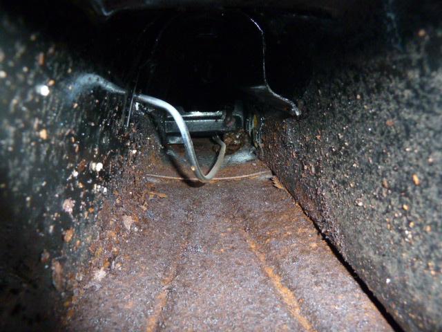 denis du bas rhin et sa Karmann Ghia de 73 sortie de grange - Page 7 P1080621