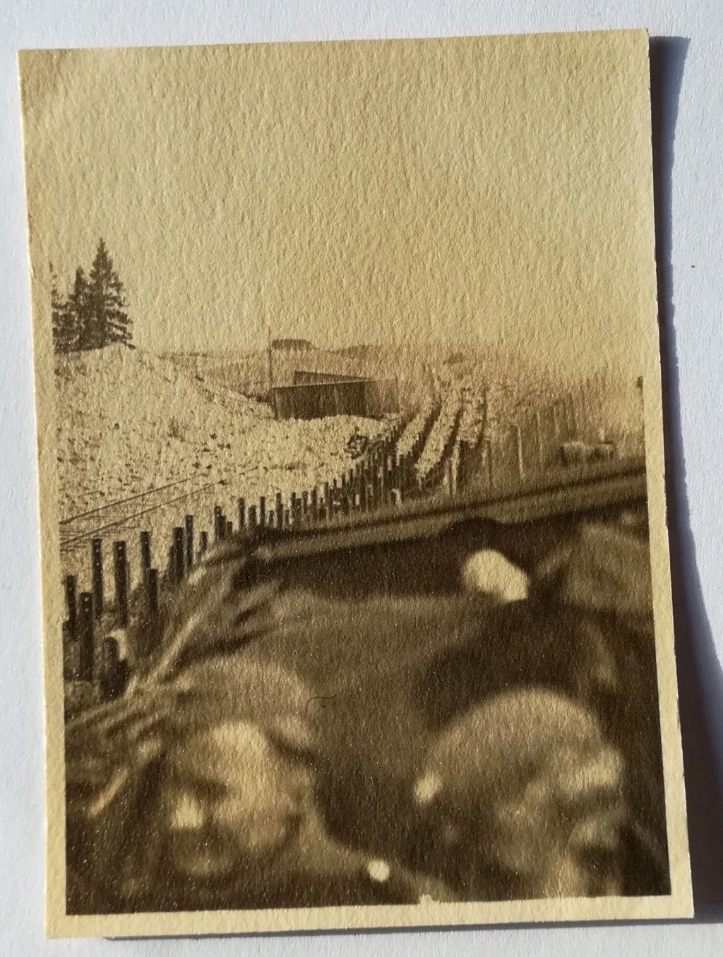 Amis collectionneurs de photos allemandes ww2- identification  Img_2171