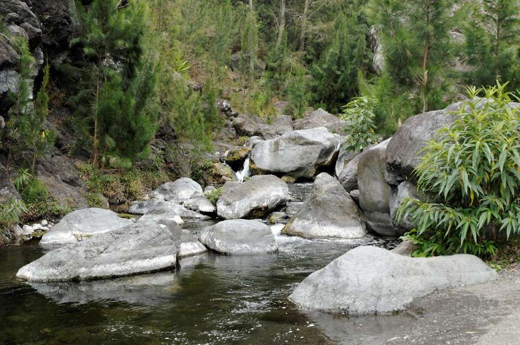 Les ruisseaux après les cascades (Réunion) Cours_10