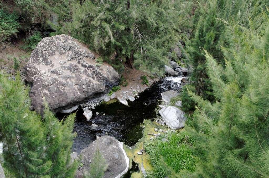 Les ruisseaux après les cascades (Réunion) Cours_11