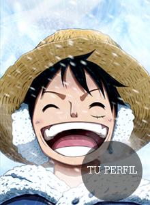 One Piece New Waves Perfil11